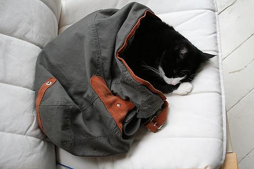 寝袋の中綿素材(ダウンと化学繊維)