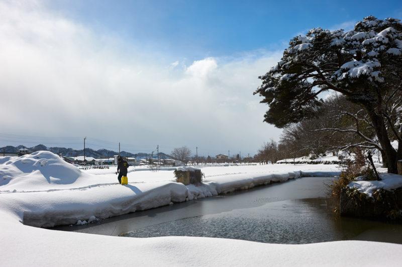 全日本50㎞競歩高畠大会2019・結果速報・日程
