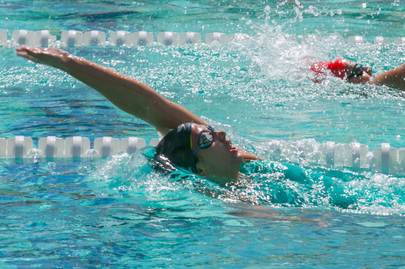 日本選手権水泳競泳2020結果速報女子・日程放送・JAPAN SWIM