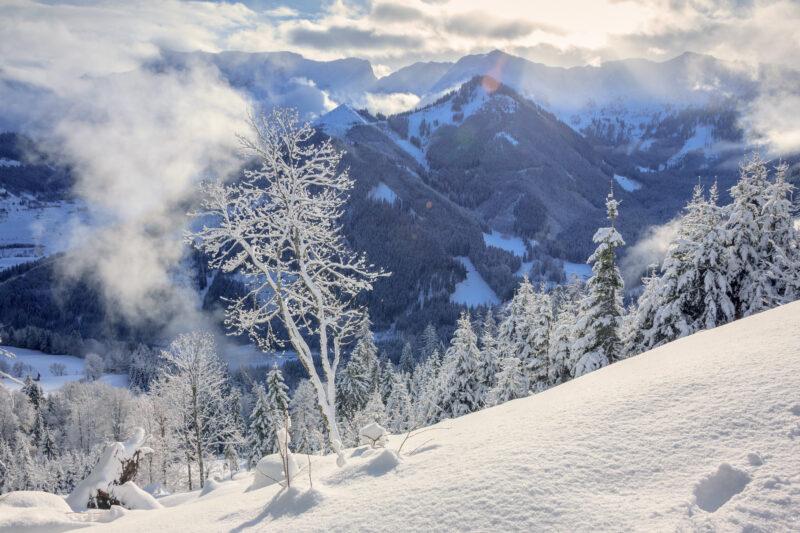 スキージャンプ・ワールドカップ2021-22結果速報ラムソー・高梨沙羅・テレビ放送