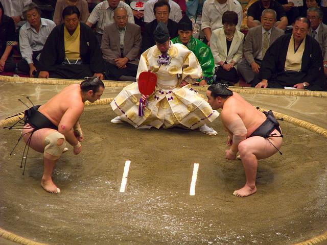 愛媛国体2017の相撲、日程会場・組み合わせ表!