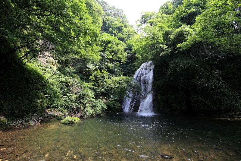 東北高校総体陸上2019インターハイ 男子結果速報・日程