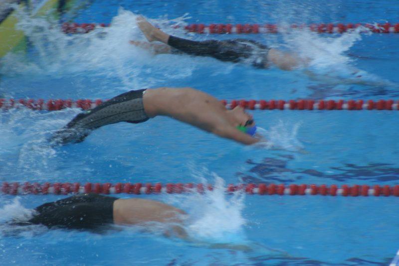 速報 ジュニア オリンピック 水泳 2019