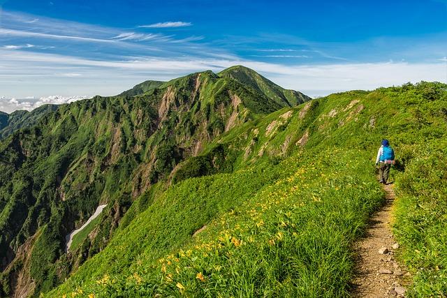 登山道を走る
